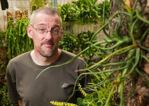 """<p>Clint Morse, manager of growth operations for the ecology and evolutionary biology department, in the Epiphyte Room of the EEB greenhouse. The epiphyte shown at right is a Tillandsia bulbosa (or """"dancing bulb""""). Photo by Frank Dahlmeyer</p>"""