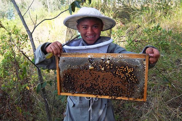 Elizabeth Clark is a Peace Corps volunteer who is establishing a beekeeping cooperative in Ecuador.