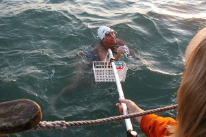 Slowing down and taking some nourishment from her crew in the support boat during Fry's 2003 Channel crossing. (Photo courtesy of Elizabeth Fry)