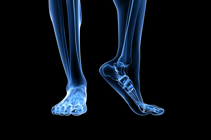 Foot x-ray (Shutterstock)