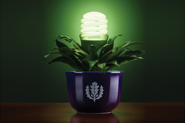 Photo of a light bulb in a plant pot with the UConn logo representing going green.