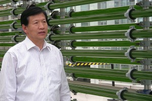 Gan and his ENN research team's development of technologies that process algae into clean-burning biodiesel fuels are gaining international attention.