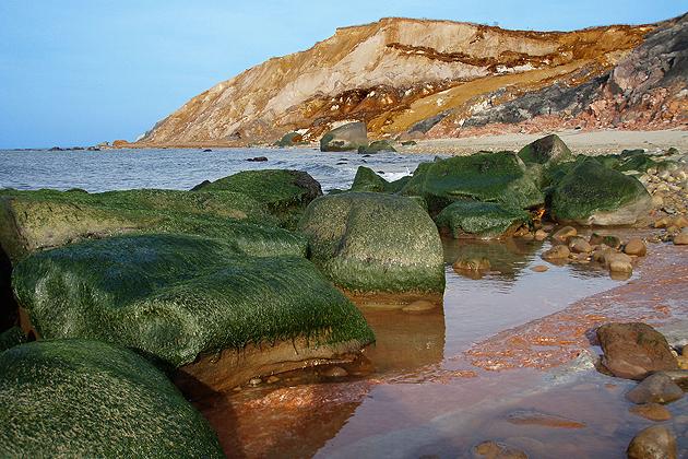 Cliffs and coastal landscape on Martha's Vineyard (Wikimedia Commons Photo)
