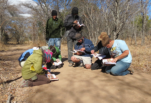 UConn students examine animal tracks at Entabeni Game Reserve in South Africa, where they traveled in the summer of 2012 as part of a three-week African field ecology course taught by Associate Professor Morty Ortega. (Stefanie Dion Jones/UConn Photo)