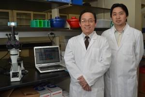 ImStem Biotechnology, Inc.
