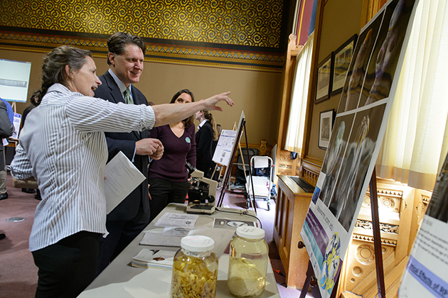 Janine Caira, left, Board of Trustees Distinguished Professor of Ecology and Evolutionary Biology, speaks with Damian Wasserbauer of Canton about her electron microscope photographs of tapeworms at the Capitol Building on April 11. (Peter Morenus/UConn Photo)