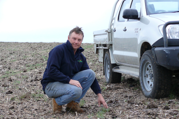 Andrew Hansen on his farm in Coomandook, South Australia. (Photo courtesy of Australian Center for Plant Functional Genomics)
