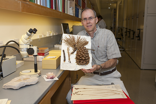 Don Les, professor of ecology and evolutionary biology, at the plant archives room in the Biology/Physics Building. (Sean Flynn/UConn Photo)
