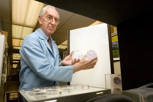 Philip Marcus, professor of molecular and cell biology, looks at HeLa cell slides from the early 1950s.