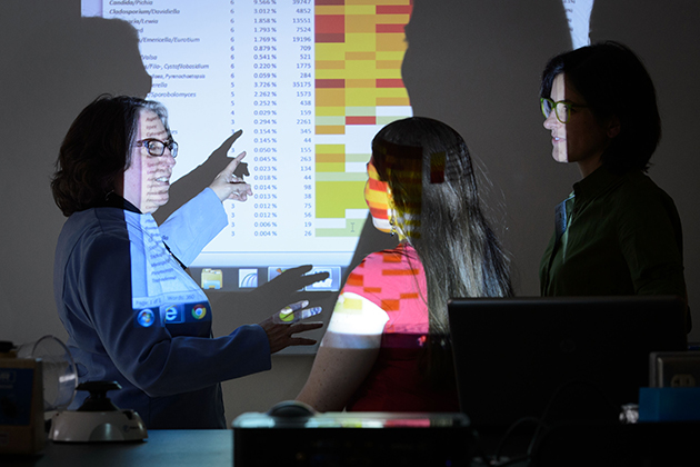 Linda Strausbaugh, left, professor of molecular and cell biology, Amanda Dupuy, a Ph.D. student, and Patricia Diaz, assistant clinical professor of periodontology, review research data in a lab at Beach Hall. (Peter Morenus/UConn Photo)