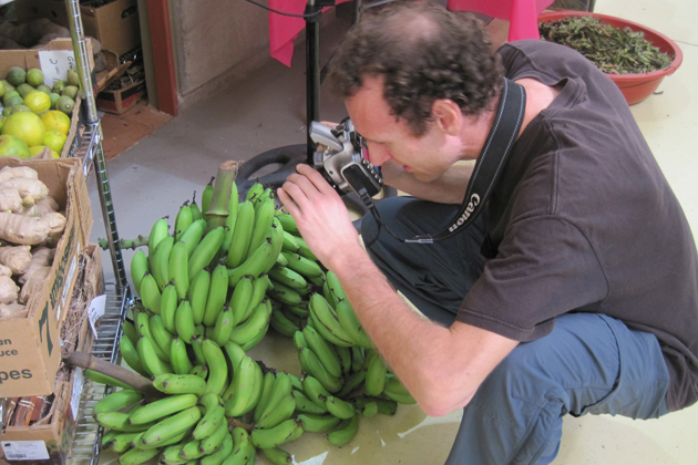 David Taylor gets a closeup at an outdoor market in Puerto Rico. (Photo courtesy of David Taylor)
