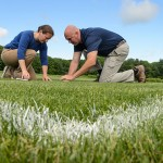 The Quest for Pesticide-Free Playing Fields