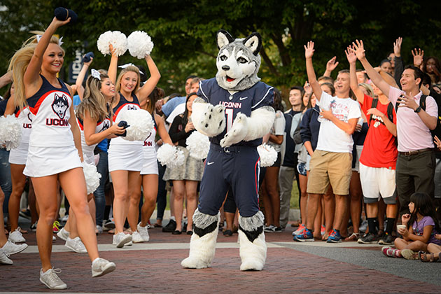 Jonathan the Husky and cheerleaders throw T-shirts to the crowd during the UConn Football pep rally held on Fairfield Way on Aug. 28. (Peter Morenus/UConn Photo)