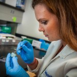 Tiny Heart Valve Has Big Potential for UConn Startup