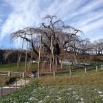 The Fourth Winter of Fukushima