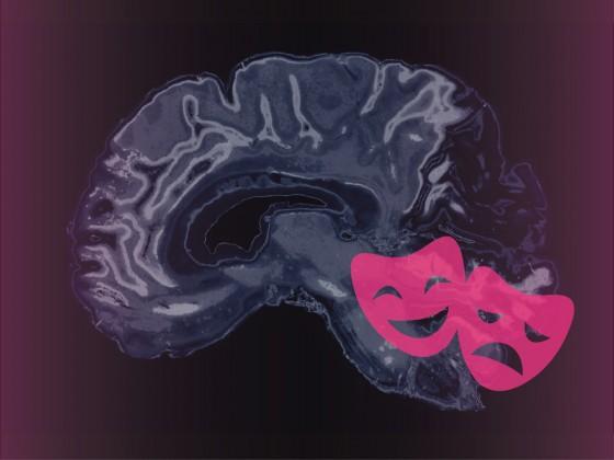 Brain-Imaging Technology Reveals Hidden Emotions