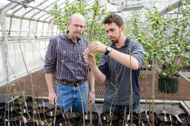 Horticulture Student has Fruitful IDEA