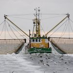 Fishing boat. (iStock Photo)