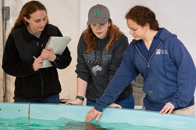 Coveted Class: Marine Biology, MARN 3014